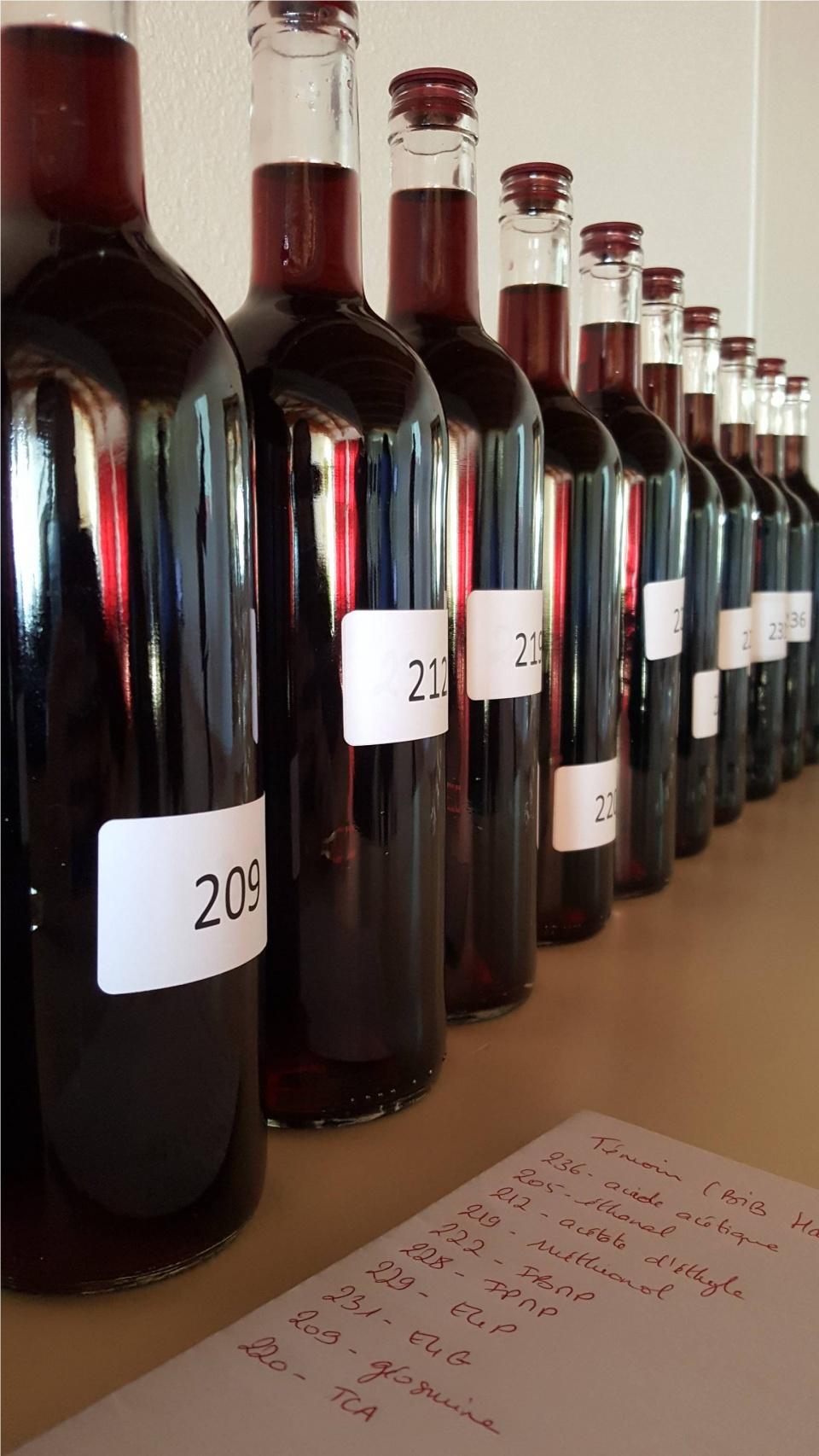 échantillons de vin contenants différents défauts
